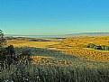 Picture Title -  Otago Basin