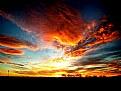 Picture Title - dawn
