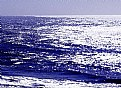Picture Title - Lighted Ocean