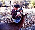 Picture Title - Father, Child & Deer