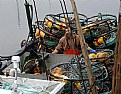 Picture Title - End Of Crabbing Season