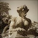 Picture Title - sphinx