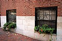 Picture Title - Streetside Window Boxes