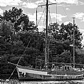 Picture Title - Old Girl by the Sea