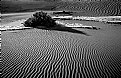 Picture Title - Death Valley Dunes