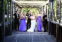 Picture Title - Wedding Party