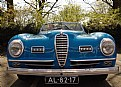 Picture Title - Alfa Romeo