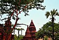 Picture Title - Temple & Trees