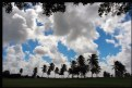 Picture Title - Cloudy Day