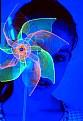 Picture Title - Pinwheel Masquerade