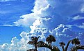 Picture Title - Blue Sky & White Clouds