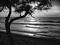Picture Title - recife, brasil