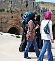 Picture Title - Visitors