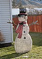 Picture Title - No Snow Snowman