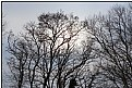 Picture Title - wintersun