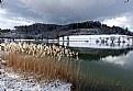 Picture Title - Hiver au Lac de Bret