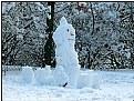 Picture Title - little big snowman