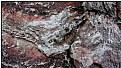 Picture Title - frozen rock
