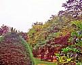 Picture Title - Colour & Nature