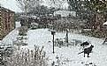 Picture Title - Snow Storm