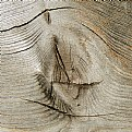 Picture Title - wood-structure 1