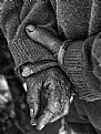 Picture Title - Working Hands
