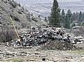 Picture Title - Trash Pile