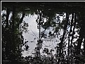 Picture Title - mirror pool