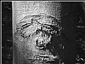 Picture Title - hidden eye