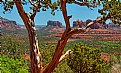 Picture Title - Sedona's Red Rocks