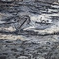 Picture Title - old wood with screw