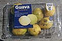Picture Title - Guava