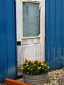 Picture Title - Marigolds & Door