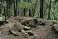 Picture Title - Rockwood Conservation