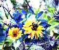 Picture Title - Yellow Flower and Bee