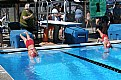 Picture Title - Swim Meet Dive