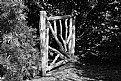 Picture Title - Wooden Gate