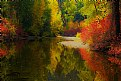 Picture Title - Refections of Autumn