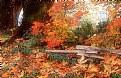 Picture Title - Fall Scene