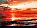 Picture Title - Sun & Colour