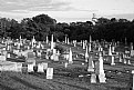 Picture Title - Cemetery at Provincetown
