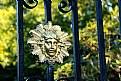 Picture Title - Fence Decoration