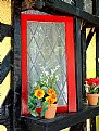 Picture Title - Flowers & Window