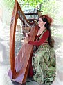 Picture Title - Harpist