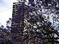 Picture Title - Tres & City