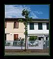 Picture Title - Via Badia N° 7
