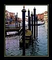Picture Title - Venezia 70