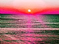 Picture Title - Sun & Colur