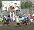 Picture Title - Calf Roping Miss