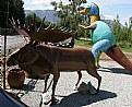 Picture Title - Farm Moose